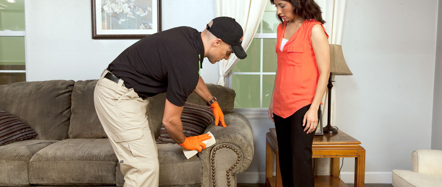 Virginia Beach, VA carpet upholstery cleaning