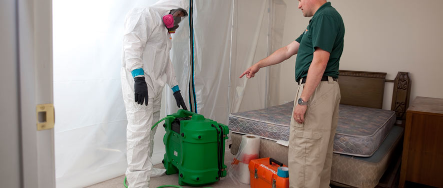 Virginia Beach, VA mold removal process